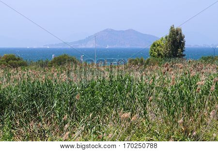 Birdwatching Scenic Area On A Background Of Mediterranean Sea Near Famous Calis Beach, Fethiye, Turk