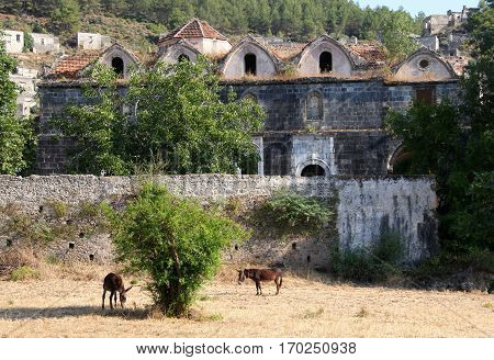 Ruined Greek Orthodox Church in the Ghost town of Kayakoy (Turkey)