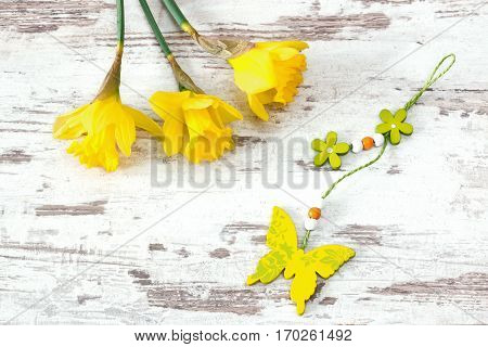 jonquils with wooden butterfly on bright wooden background