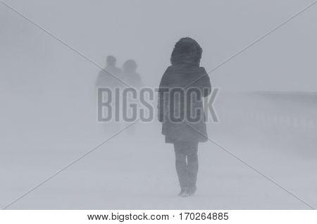WINTER ATTACK - People walking through the blizzard