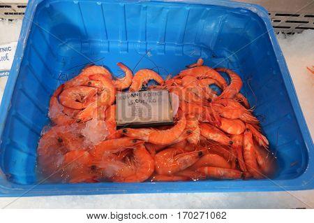 Fresh prawns (shrimp) of Adriatic sea at the fish market in Bar-city, Montenegro.
