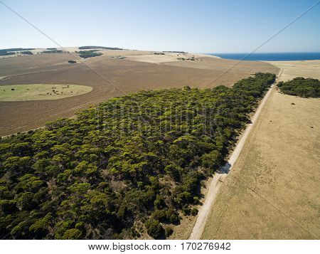 Aerial View Of North Cape Road, Trees And Pastures. Kangaroo Island, South Australia.