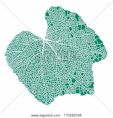 Teal-green lace skeleton leaf vector illustration isolated on white.