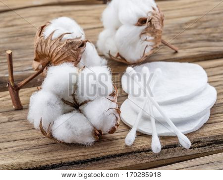 Fluffy cotton ball and cotton swabs and pads on wooden table.