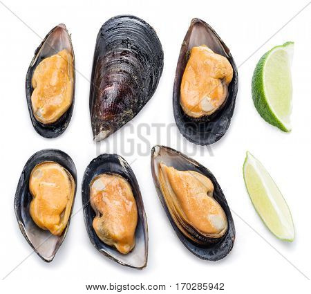 Boiled mussels on a white background.