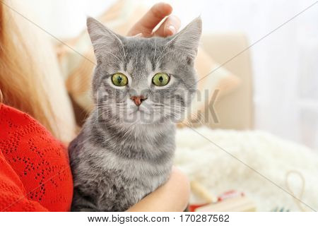 Woman holding cute cat on couch