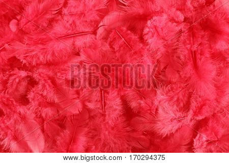Background - small magenta plumes situated irregularly
