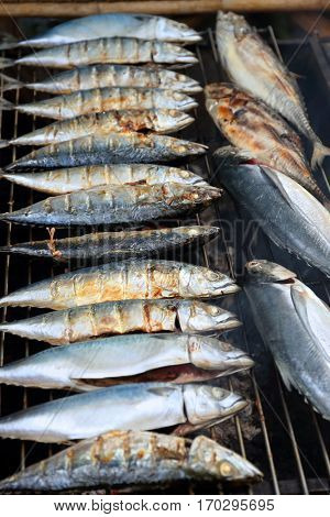 Mackerel fish fried on a grill on the market in Thailand