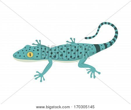 Blue lizard reptile isolated vector illustration. Wild cartoon nature dragon funny design. Reptile flat drawing body monster character.