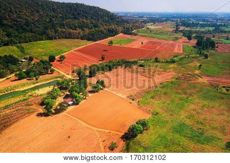 Often many farmers cut forests to provide more land for planting crops