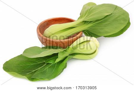 Closeup of Organic Bok Choy over white background