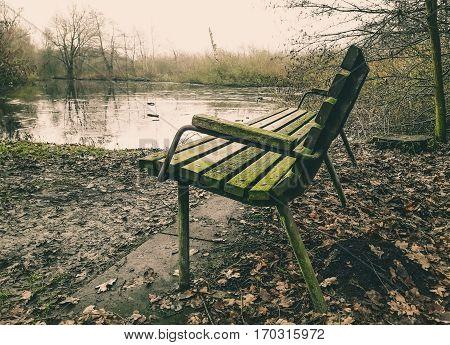 Lonely old wooden bench beside a marshland in Brunevang Rodovre Denmark
