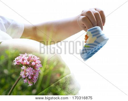 Double Exproure Of Pregnant Woman Holding Baby Shoes And Bossom Flower Isolated On White Background.