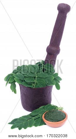 Edible moringa leaves in a vintage mortar with ground paste over white background