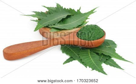 Medicinal neem leaves with ground paste in a spoon over white background