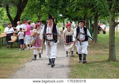 TRNOVEC, CROATIA - JULY 09, 2016: Farmers enter the harvest in Trnovec, Croatia on July 09, 2016.