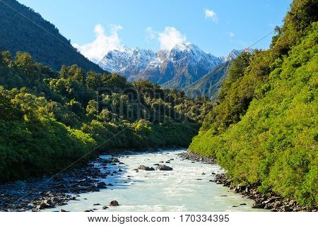 Mt Tasman and The Alps Over The Fox River.  Westland National Park, New Zealand