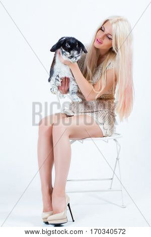Pretty blonde with long hairs sits on chair with black rabbit in white studio