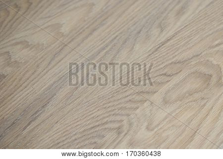 Oak texture.