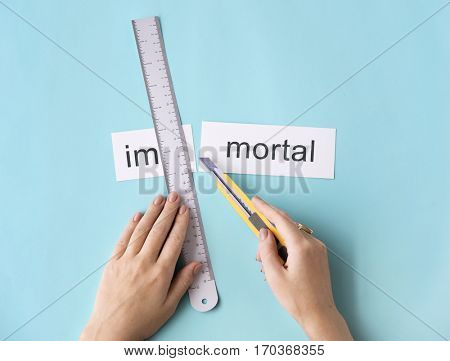 Immortal Forever Hand Cut Word Split Concept