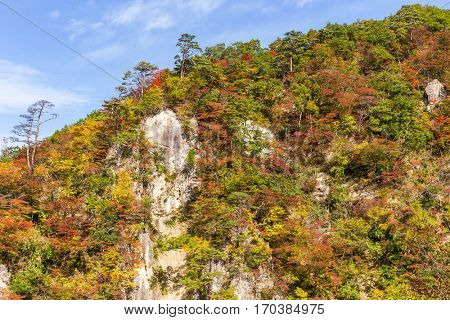 Japan Naruko canyon in Autumn
