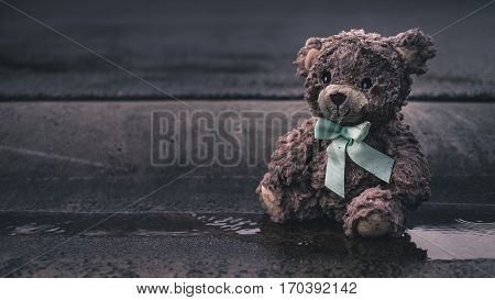 Left Behind toy teddy Bear in rain