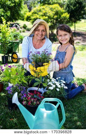 Portrait of grandmother and granddaughter gardening in the park on a sunny day