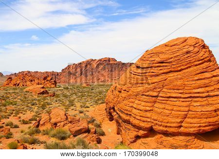 Orange Rocks in the Valley of Fire State Park in Nevada, USA