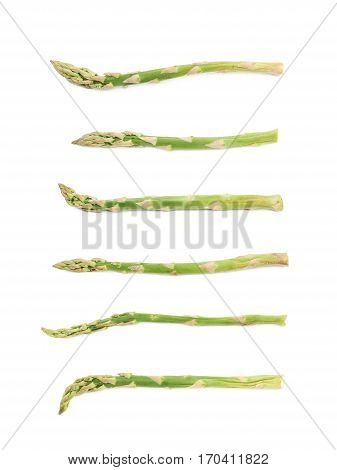 Single spear of the green asparagus isolated over the white background, set of six different foreshortenings