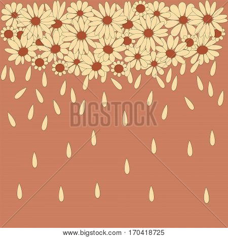 Stylish background from camomile with a falling petals