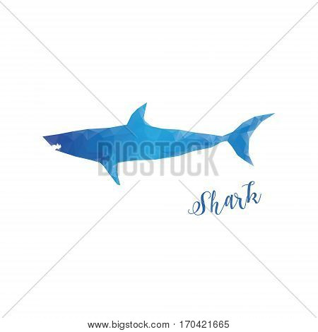 Low poly shark isolated. Blue shark with lettering isolated