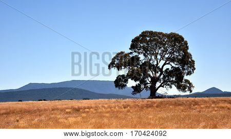 The Grampians range is majestic country in western Victorian Australia.