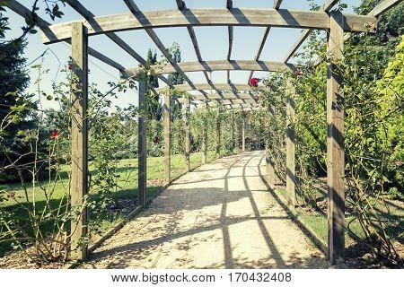 A Beautiful Wooden Pergola Inside The Arboretum