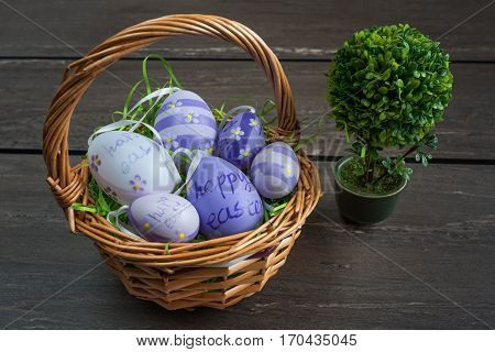 Easter wicker basket with colored eggs and a small bonsai on grey wooden board.
