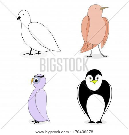 Cartoon set bird character. Owl and penguin nightingale and dove. Vector illustration