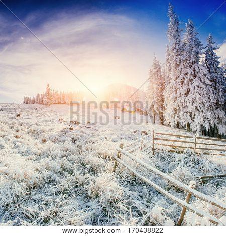 Cabin in the mountains in winter. Carpathian, Ukraine, Europe