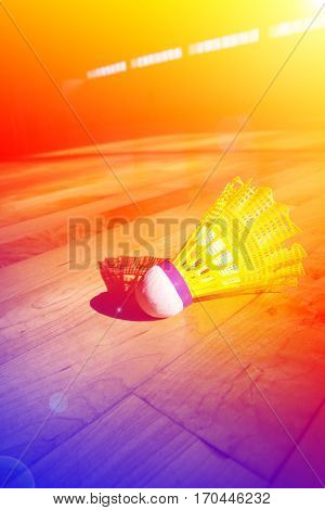 Close up shuttlecock badminton isolated on court