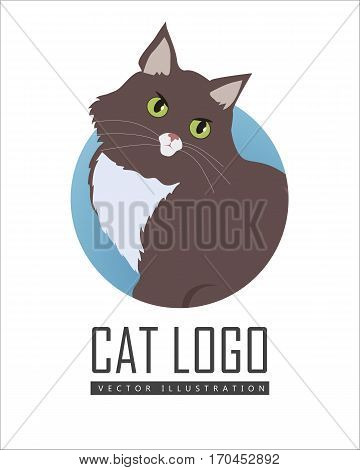 Siberian cat breed. Cute brown cat seating flat vector illustration isolated on white background. Purebred pet. Domestic friend and companion animal. For pet shop ad, animalistic hobby concept