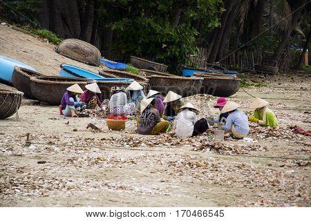 Mui Ne, Vietnam - February 7: Women Processing Seashells With Fishing Boats In Background On Februar
