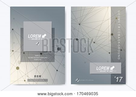 Modern vector template for brochure Leaflet flyer, advert, cover, catalog, magazine or annual report. Business, science, medical design. Scientific cybernetic dots. Lines plexus. Card surface