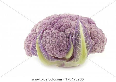 Fresh purple cauliflower on a white background