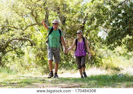 Couple pointing and holding hands each other during a hike on the wood