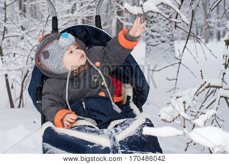 Little boy enjoying sleigh ride. Child sledding. Toddler kid riding sledge. Children play outdoors in snow. Kids sled in snowy park. Outdoor winter fun for family Christmas vacation.
