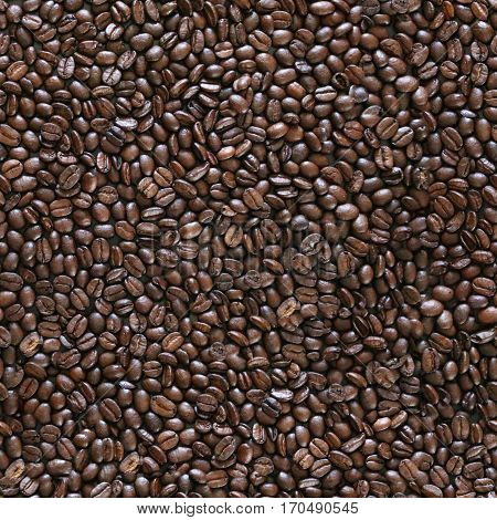 Seamless texture of arabica coffee beans background.
