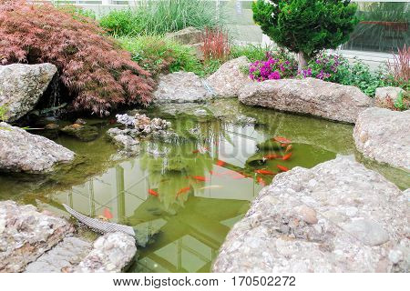Swimming pool with red fish. Swimming pool with red fish. Swimming pool made of natural stones.