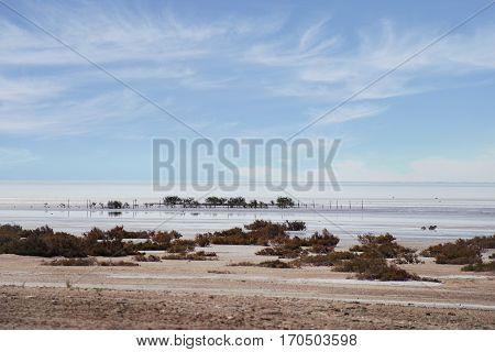 Deserted beach, sunny day, a mirage. . Sea coast, surf, beautiful sky