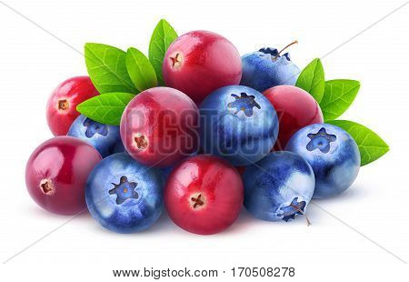 Isolated Cranberries And Blueberries
