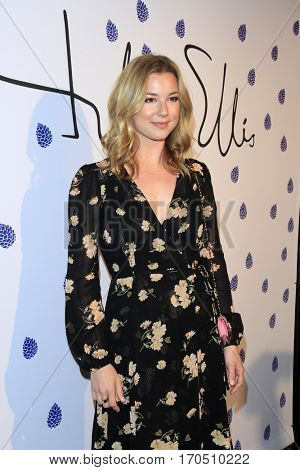 LOS ANGELES - JAN 31:  Emily VanCamp at the Tyler Ellis 5th Anniversary Party and Tyler Ellis x Petra Flannery Collection Launch at Chateau Marmont on January 31, 2017 in West Hollywood, CA