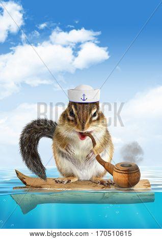 Funny mariner concept animal , chipmunk floating