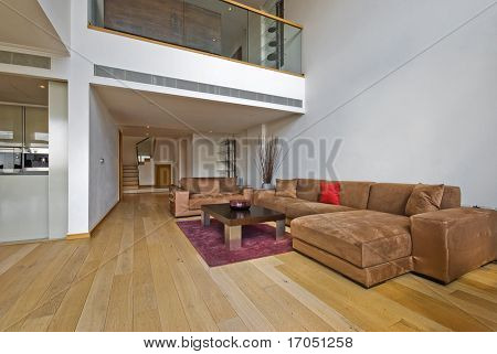 luxury open plan living room with atrium